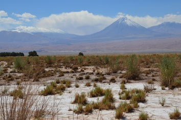 Ren Sairecabur und Salzpfanne in der Atakama
